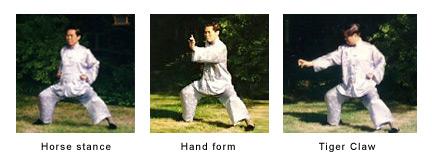Shaolin Kung Fu Sifu-One-Finger-Shooting-Zen